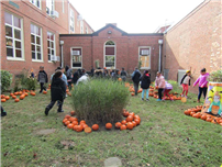 Students get festive with annual 'Pumpkin Day' photo 2